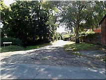 TM0890 : Tanning Lane, New Buckenham by Adrian Cable