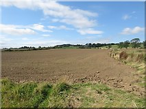NU2314 : Cultivated field south of Ratcheugh by Graham Robson