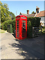 TM1495 : Telephone Box on the B1113 Norwich Road by Adrian Cable
