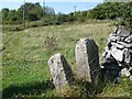 SK2754 : 'Find a stone stile that has no purpose' by Christine Johnstone