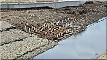 J3674 : Connswater works, Belfast - September 2016(2) by Albert Bridge