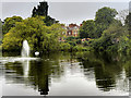 SP8633 : The Lake and Mansion, Bletchley Park by David Dixon