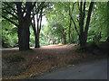 TR3150 : Roman Road by Hugh Craddock