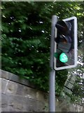 SK4346 : UK Green Traffic Light by Gary