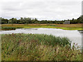 SP8863 : Summer Leys Local Nature Reserve by David Dixon