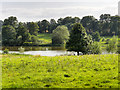 SK4563 : Hardwick Park, View towards The Great Pond by David Dixon