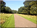 SK4664 : Driveway to Hardwick Hall by David Dixon