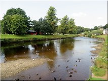 NY6820 : River Eden at Appleby - in - Westmorland by Philip Platt