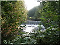 SD8505 : Weir on the River Irk by John Slater