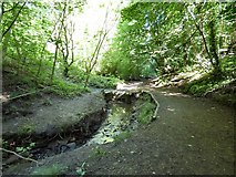 SJ9594 : Culvert in Gower Hey Wood by Gerald England