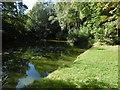 TQ7035 : Pond at Kilndown by Marathon