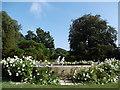 TR3068 : Ornamental pond in the gardens of Quex Park by Marathon