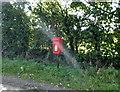 NY3048 : Elizabeth II postbox, West Woodside by JThomas