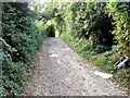 TQ8952 : Pilgrims Way, near Lenham by Chris Whippet