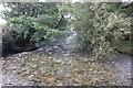 SH6473 : The Afon Aber at Abergwyngregyn by Jeff Buck