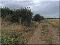 TR3156 : Footpath junction south of Grove Manor Farm by Hugh Craddock