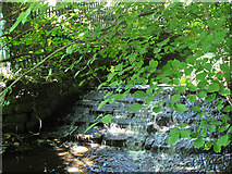 SE2837 : Weir on the Meanwood Beck by Stephen Craven
