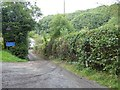 SS5616 : Narrow road to Roborough Mill by David Smith