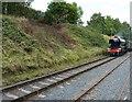 SO7289 : Flying Scotsman comes through Eardington Halt by Richard Law