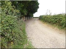 TQ1913 : Footpath approaches Upper Wyckham Farm by Shazz