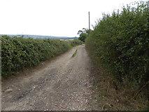 TQ1913 : Footpath going south from Upper Wyckham Farm by Shazz