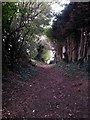 SZ1492 : Tuckton: midway along footpath I18 by Chris Downer