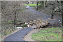 TQ5940 : New footbridge, Grosvenor Park by N Chadwick