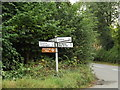 TL9267 : Roadsign on The Street by Adrian Cable