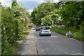 TQ3437 : Grange Rd by N Chadwick