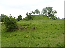 SO7937 : Castlemorton Tump by Jeff Gogarty
