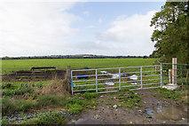 R8286 : Farm gateway, Ballycraggan by David P Howard