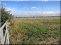 SP6805 : Farmland at North Weston by Des Blenkinsopp