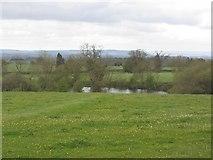SO4465 : Pond, Croft by Richard Webb