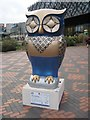 SP0686 : A Big Hoot, Wise Old Owl by Philip Halling