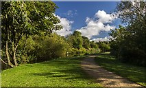 SD9201 : Hollinwood Branch Canal by Peter McDermott