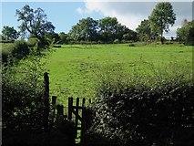 SK1750 : Footpath up a ridge and furrow field by Ian Calderwood