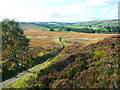 SE0136 : The Bronte Way descending from Penistone Hill, Haworth by Humphrey Bolton