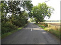 TM1588 : B1134 Long Row, Sneath Common by Adrian Cable