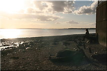 TA0225 : Gazing across the Humber on a Sunday evening in October by Chris