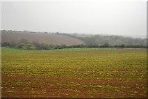 SW6138 : Cornish farmland by N Chadwick