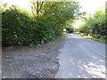 TQ2831 : Handcross Road going west towards crossroads with Brantbridge Lane by Shazz