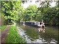 TQ0586 : Kerala and Karnataka, hotel narrowboats by David Hawgood