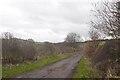 NT8332 : Road, Mindrum by Richard Webb
