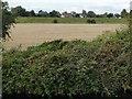 SE6512 : Stubble field, Huddle Grounds by Christine Johnstone