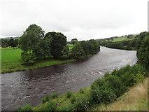NY9724 : River Tees by Les Hull