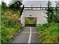 SD7910 : NCN Subway at Bury Bridge by David Dixon