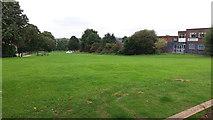 SE2434 : Open space between Stanningley Road and Elder Road by Stephen Craven