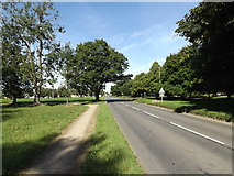 TM0691 : B1077 The Green, Old Buckenham by Adrian Cable