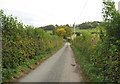 SO4483 : By Ireland to the Monument - Lower Dinchope, Shropshire by Martin Richard Phelan