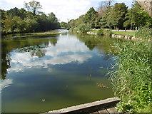 TQ2394 : Long Pond on Totteridge Common by Marathon
